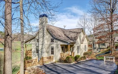 Hiawassee Single Family Home For Sale: 203 Evergreen Road