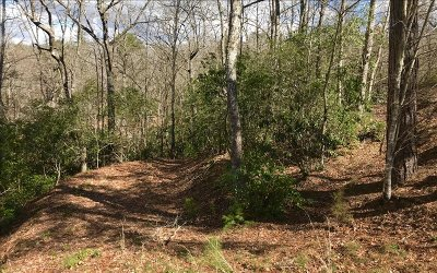 Brasstown Residential Lots & Land For Sale: 24 The Overlook