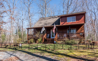 Mineral Bluff Single Family Home For Sale: 661 Evergreen Ln