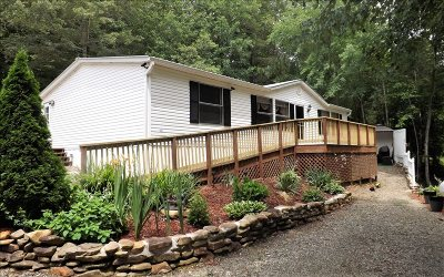 Blairsville Single Family Home For Sale: 385 Popular Drive