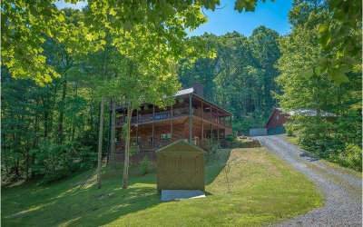 Blue Ridge Single Family Home For Sale: 106 Aska Springs Rd