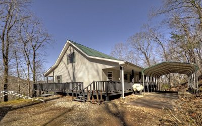 Blairsville Single Family Home For Sale: 771 Flat Rock Gap Road