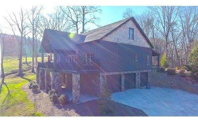 Ellijay Single Family Home For Sale: 209 Greystone Trace