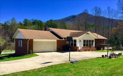 Single Family Home For Sale: 474 Puett Cove