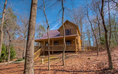 Ellijay Single Family Home For Sale: 1341 Villa Drive