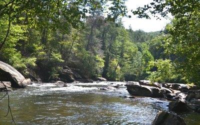 Blue Ridge Single Family Home For Sale: 145 River Bend Lane