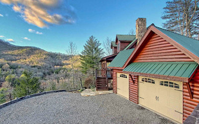 Hiawassee Single Family Home For Sale: 1703 Sheep Cliff Road
