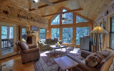 Ellijay Single Family Home For Sale: 438 Whitewater Run