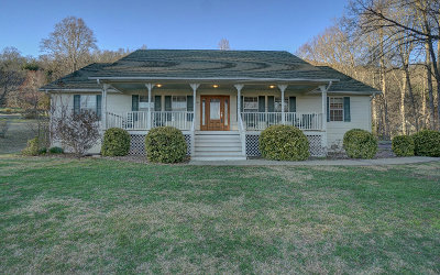 Hiawassee Single Family Home For Sale: 270 S Meadow Drive
