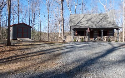 Ellijay Single Family Home For Sale: 810 Zenith Trail