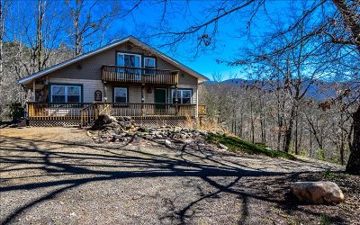 Hayesville Single Family Home For Sale: 289 Bethabara Rd