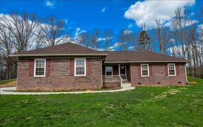 Towns County Single Family Home For Sale: 794 St Hwy 66