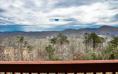Hayesville Single Family Home For Sale: 1195 West Cherry Road