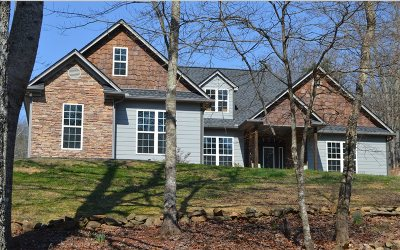 Blairsville Single Family Home For Sale: 357 Little Coosa Road