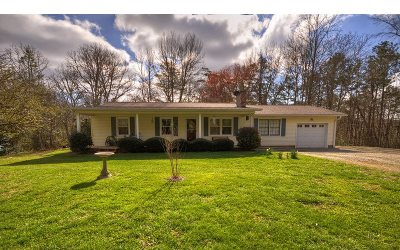 Blairsville Single Family Home For Sale: 264 Eagle Bend Road