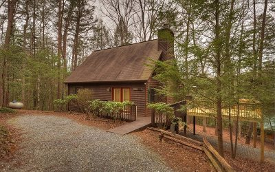 Blue Ridge Single Family Home For Sale: 96 Icy Lane