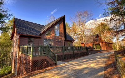 Ellijay Single Family Home For Sale: 1287 Shenendoa Dr