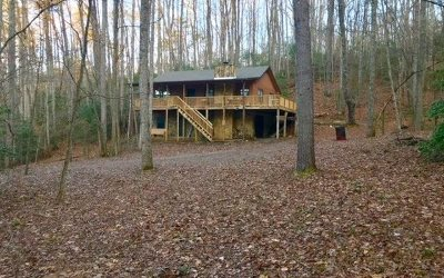 Cherokee County Single Family Home For Sale: 353 Hamby Road