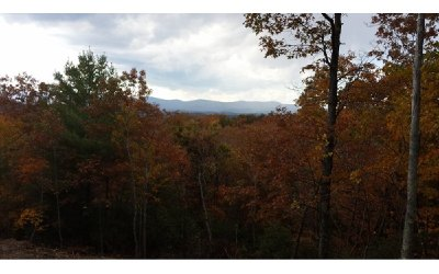 Ellijay Residential Lots & Land For Sale: Lot 8 Oceola Drive