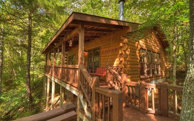 Cherry Log Single Family Home For Sale: 137 Little Beaver Drive