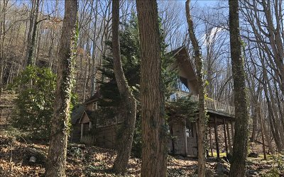 Blairsville Single Family Home For Sale: 228 Stone Drive