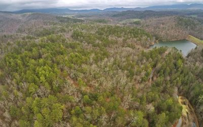 Ellijay Residential Lots & Land For Sale: Mountain Creek Dr