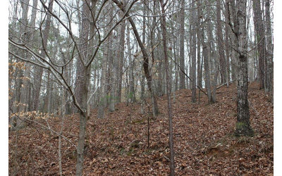 Ellijay Residential Lots & Land For Sale: Oneida Circle L 863