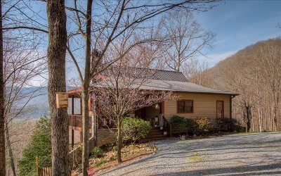 Ellijay Single Family Home For Sale: 22 Prospectors Ridge
