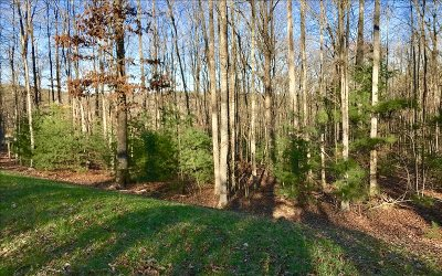 Blairsville Residential Lots & Land For Sale: Lot 1 Sharp Top Settlement