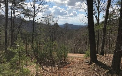 Murphy Residential Lots & Land For Sale: 12/14 Scenic Vista Drive