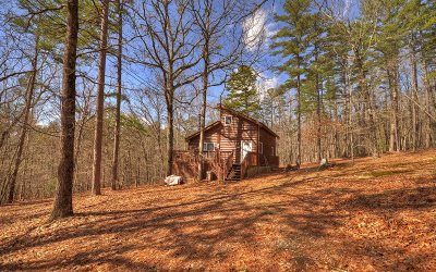 Mineral Bluff Single Family Home For Sale: 230 Sassafrass