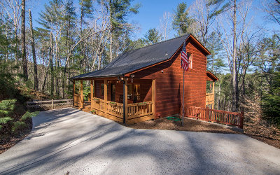 Ellijay Single Family Home For Sale: 488 Parnell Drive