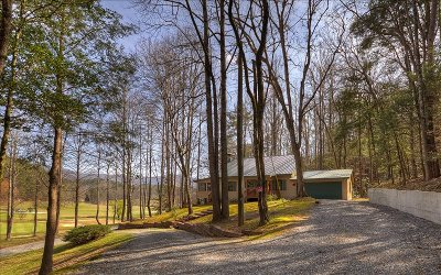 Ellijay Single Family Home For Sale: 533 Cherokee Drive
