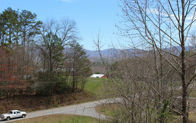Blairsville Single Family Home For Sale: 26 Pope Landing