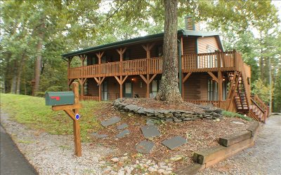 Ellijay Single Family Home For Sale: 29 Lamar Drive