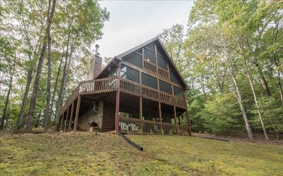 Mineral Bluff Single Family Home For Sale: 15 Snowbird Trail