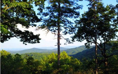 Residential Lots & Land For Sale: Frog Mountain View
