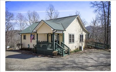 Hayesville Single Family Home For Sale: 4413 E Hwy 64