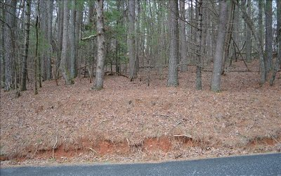 Ellijay Residential Lots & Land For Sale: 3122 Monocle Drive