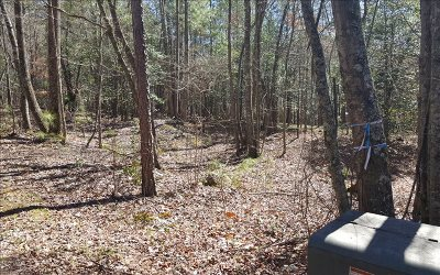Ellijay Residential Lots & Land For Sale: Lt 90 Ridge Crest Ct