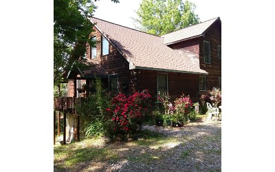 Mineral Bluff Single Family Home For Sale: 369 Moonshine Mtn Road