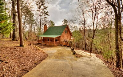 Ellijay Single Family Home For Sale: 66 Garfield Drive