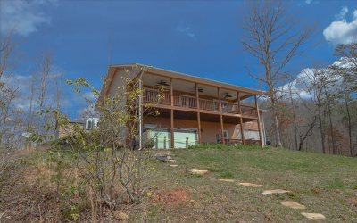 Towns County Single Family Home For Sale: 4940 Hall Road