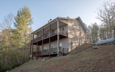 Blairsville Single Family Home For Sale: 46 Sequoya Trail