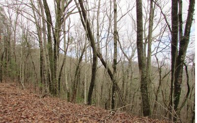 Ellijay Residential Lots & Land For Sale: 49 Fairview