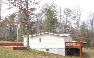 Blairsville Single Family Home For Sale: 61 Triple R Garage Cir.