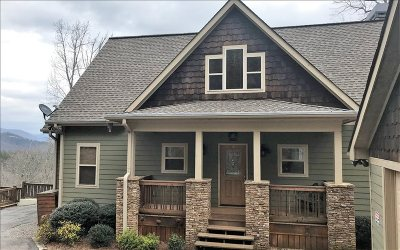 Hiawassee Single Family Home For Sale: 421 Evergreen Rd.