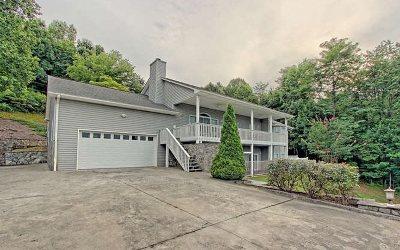 Hiawassee Single Family Home For Sale: 1292 Ramey Mountain