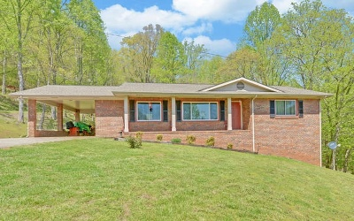 Hayesville Single Family Home For Sale: 6246 E Us Hwy 64