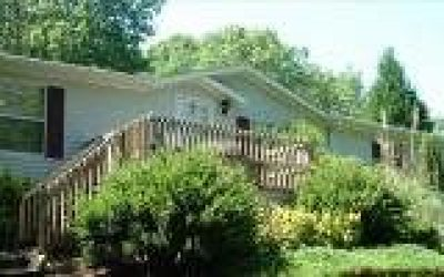 Blue Ridge Single Family Home For Sale: 150 Curtis Switch Rd.